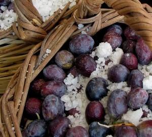 Ayvalik's Fabled Olive Oil | Olive Oil Times