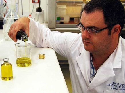 how-heat-light-and-oxygen-harm-olive-oil