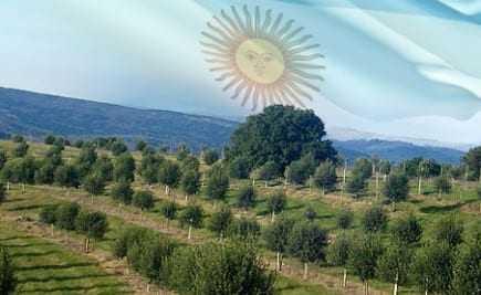 Zeytinyağı kez kriz-in-Arjantinliyim