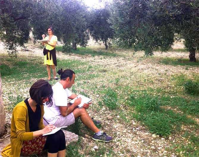 un atelier de plein air-de-durabilité-huile-d'olive-fois-un-atelier-de-plein air-de-durabilité