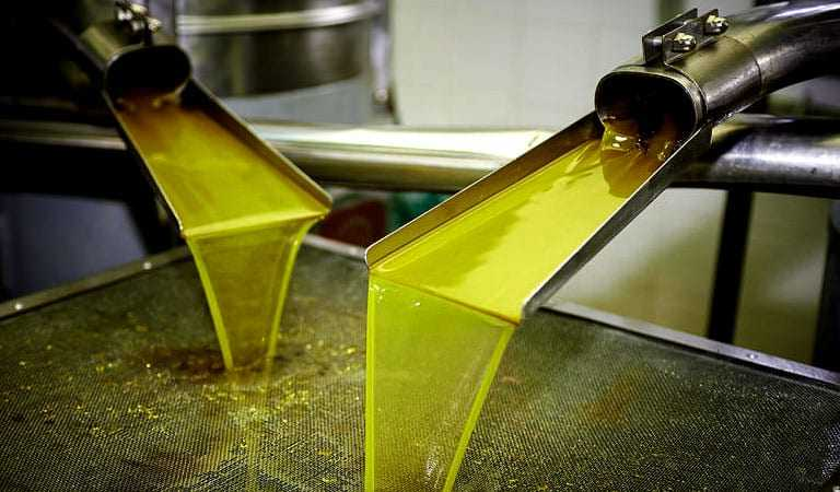 new-online-course-on-olive-oil-quality