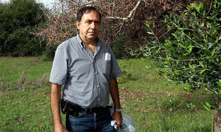 expert-says-eradication-of-new-olive-tree-disease-in-europe-unlikely