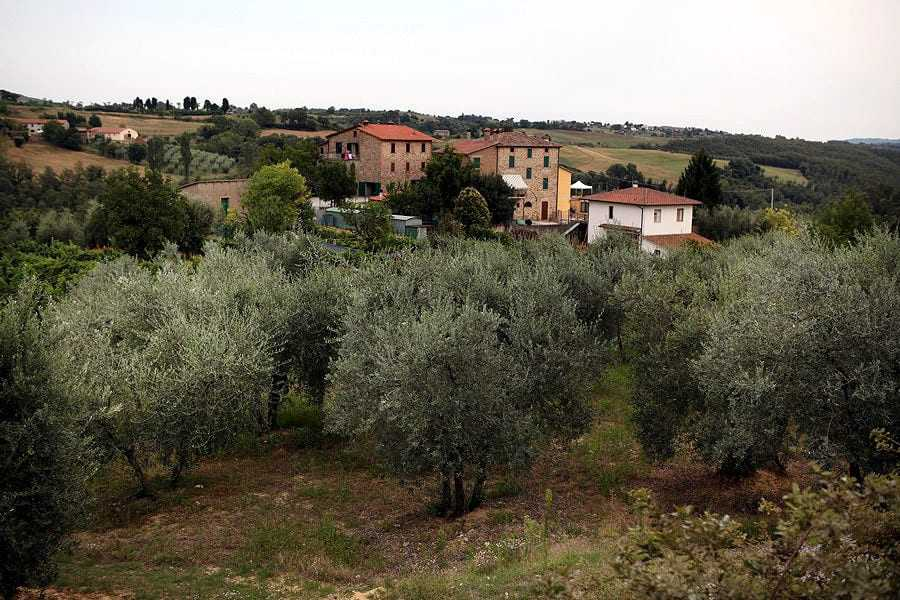 farmers-in-italy-optimistic-as-harvest-season-nears