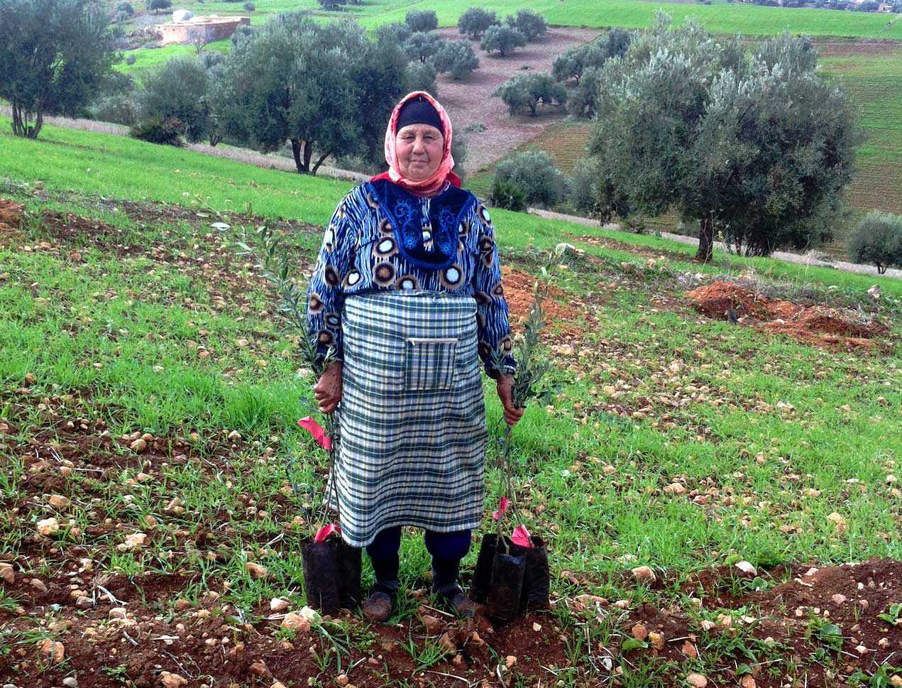 un-helps-moroccan-cooperative-boost-production-despite-drought