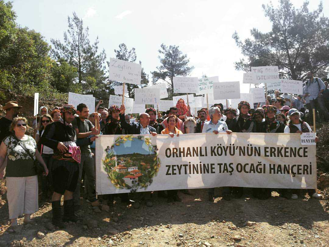turkish-government-backtracks-proposed-changes-to-olive-law