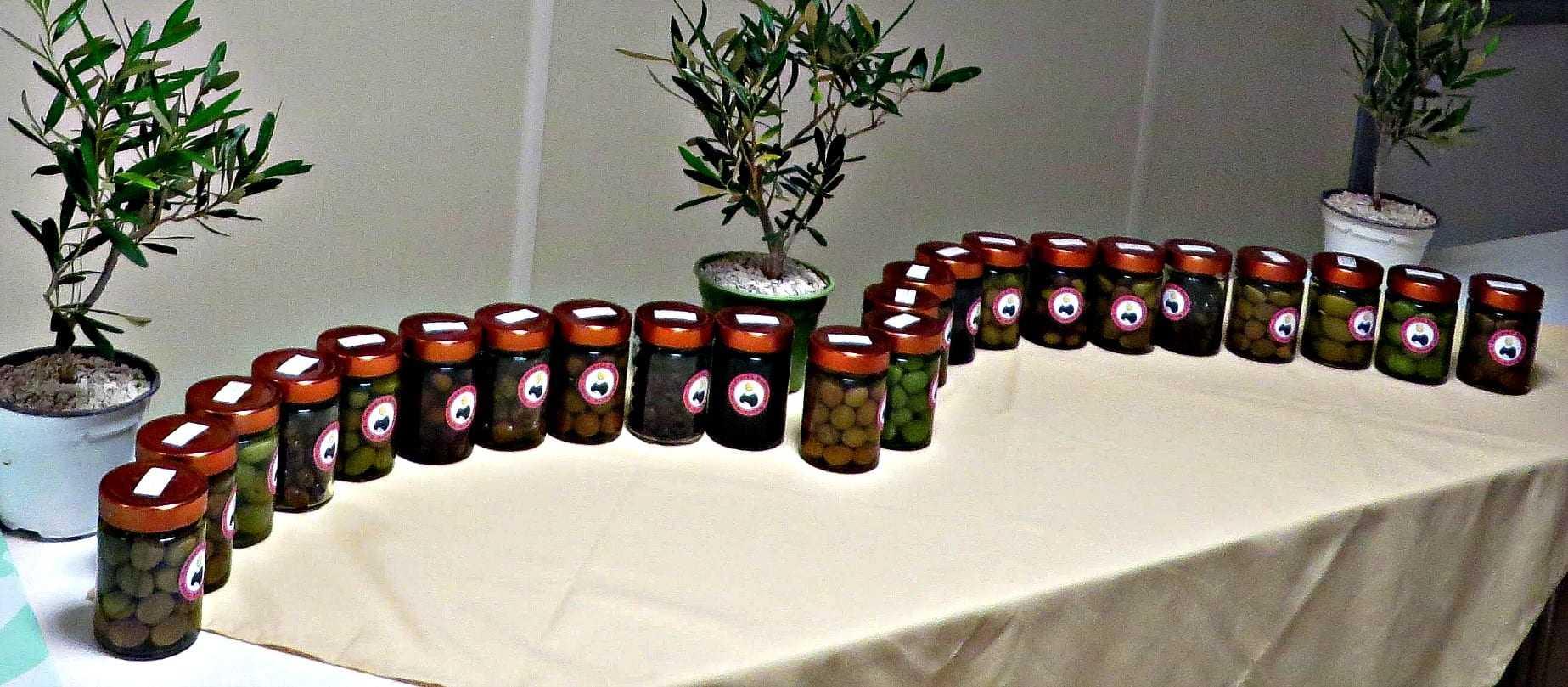 4th-monna-oliva-celebrates-best-italian-table-olives