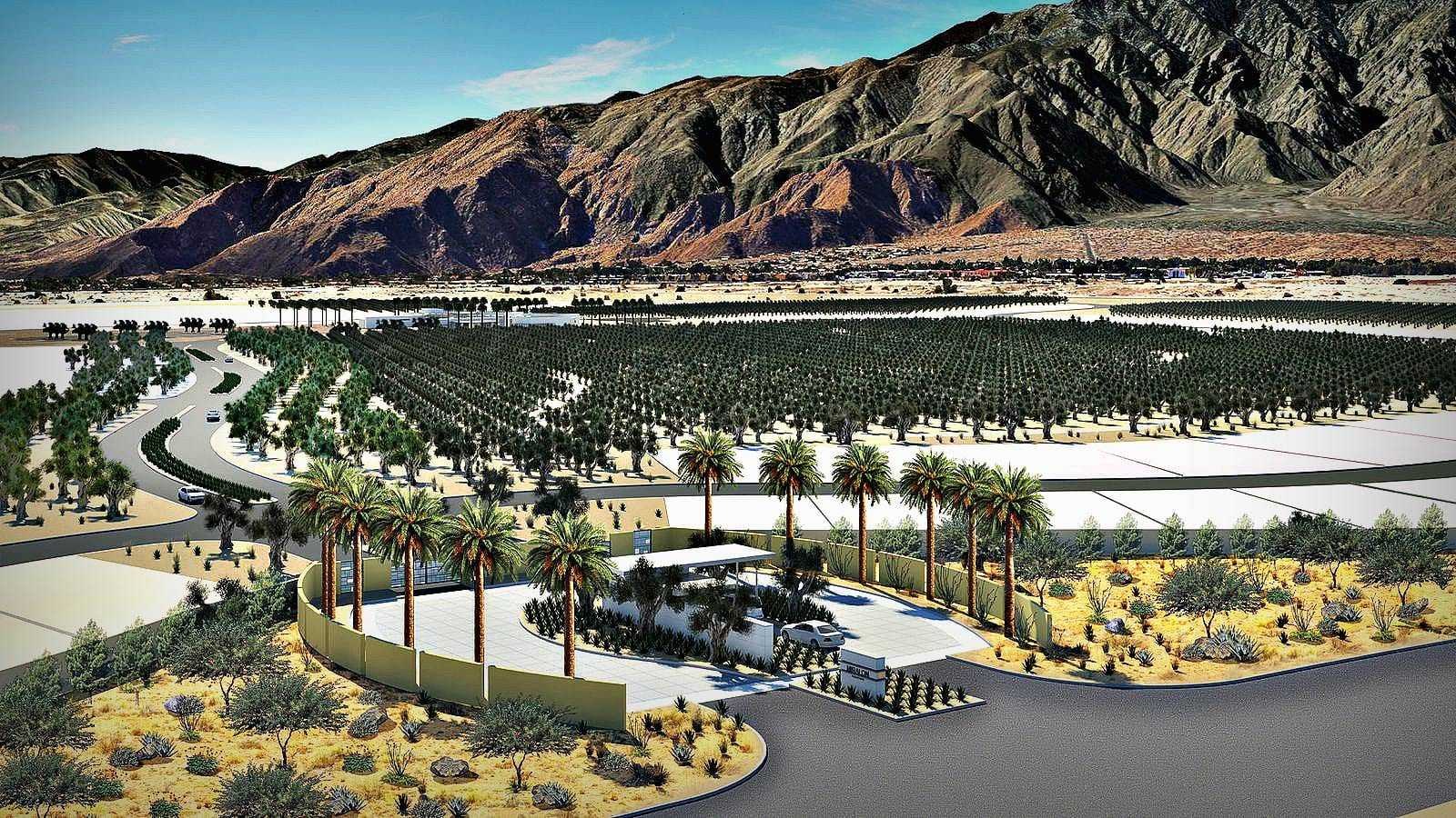 temecula-partners-with-home-builder-to-create-community-centered-around-olives