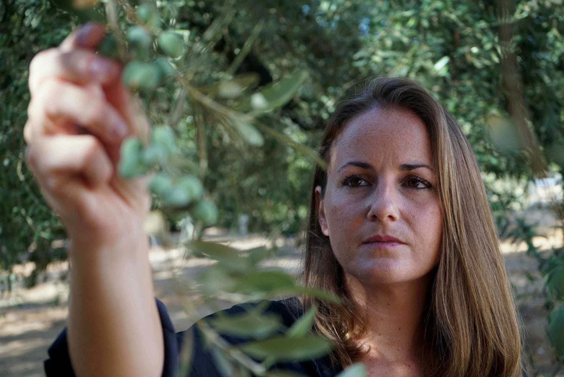at-hacienda-guzman-promoting-olive-culture-by-celebrating-its-diversity