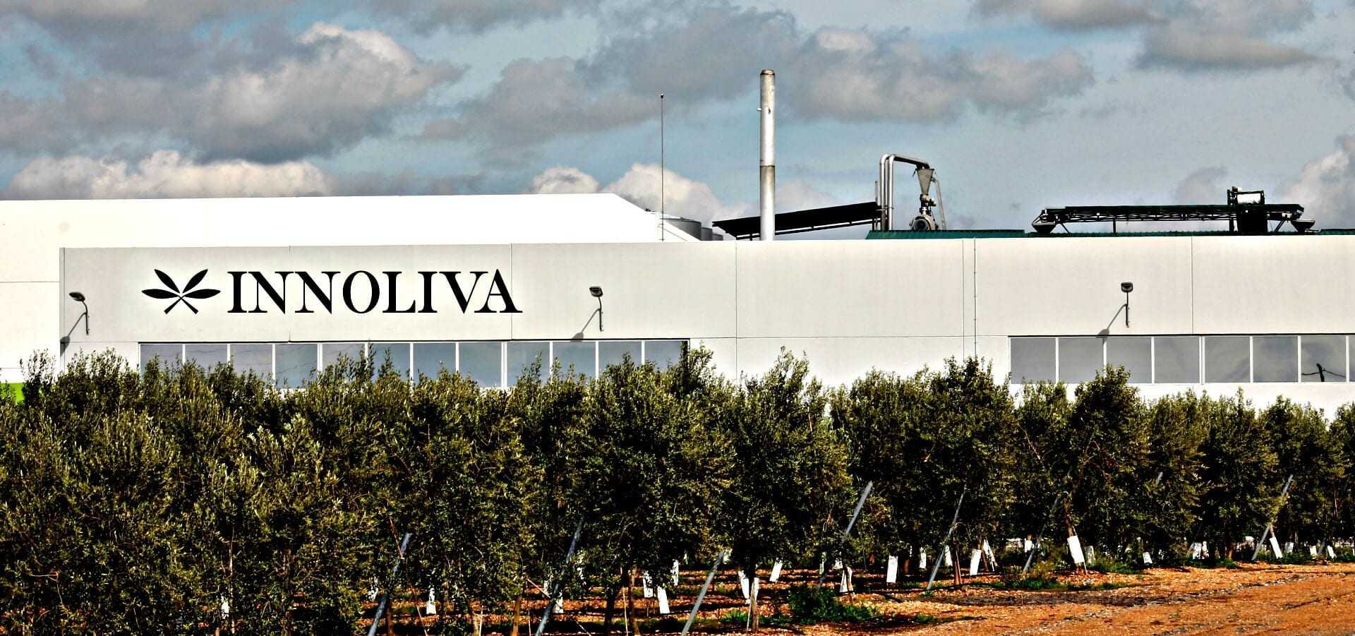 london-investment-firm-bullish-on-olive-oil