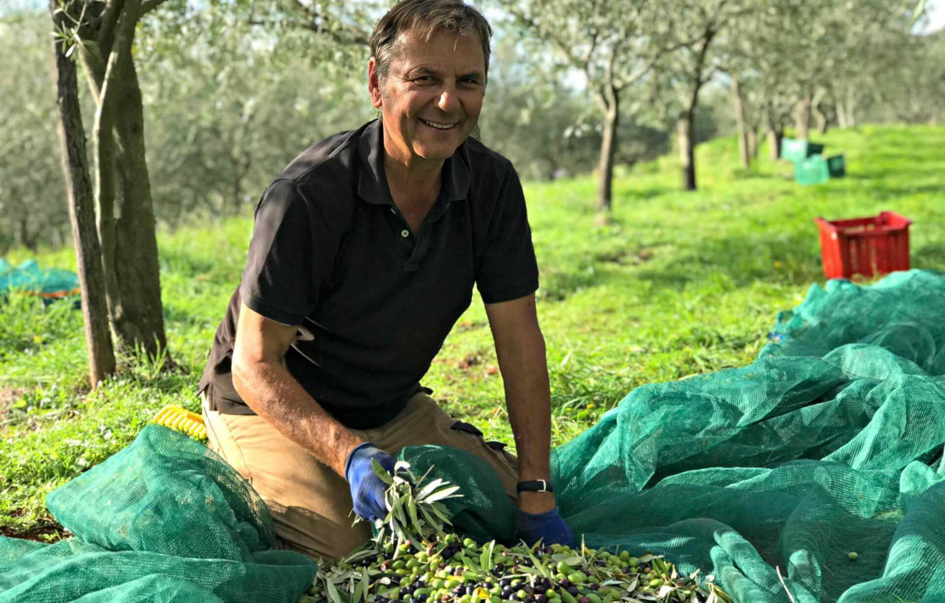 croatians-celebrate-a-high-quality-olive-harvest