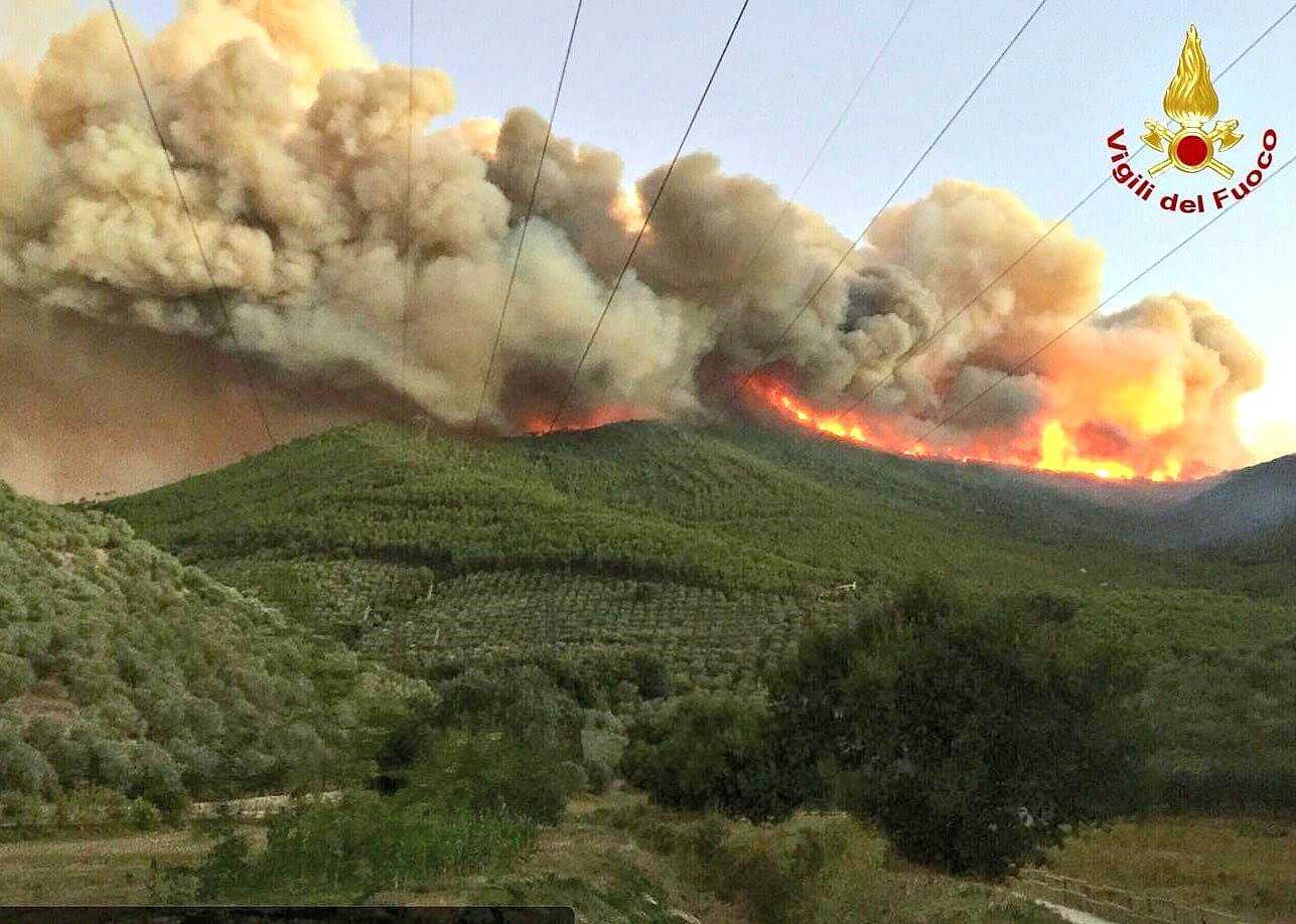 fire-in-tuscan-countryside-thousands-of-olive-trees-up-in-smoke