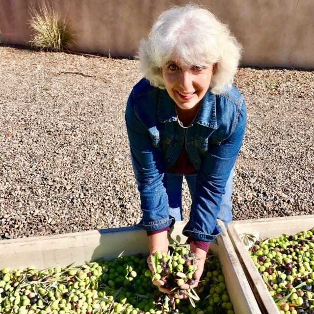 global-gardens-founder-sees-olive-tree-as-keystone-of-california-permaculture
