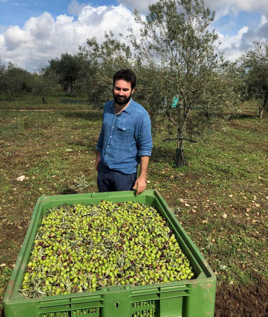 este-importador-de-aceite-de-oliva-sabe-como-encontrar-ganadores-tiempos-de-aceite-de-oliva