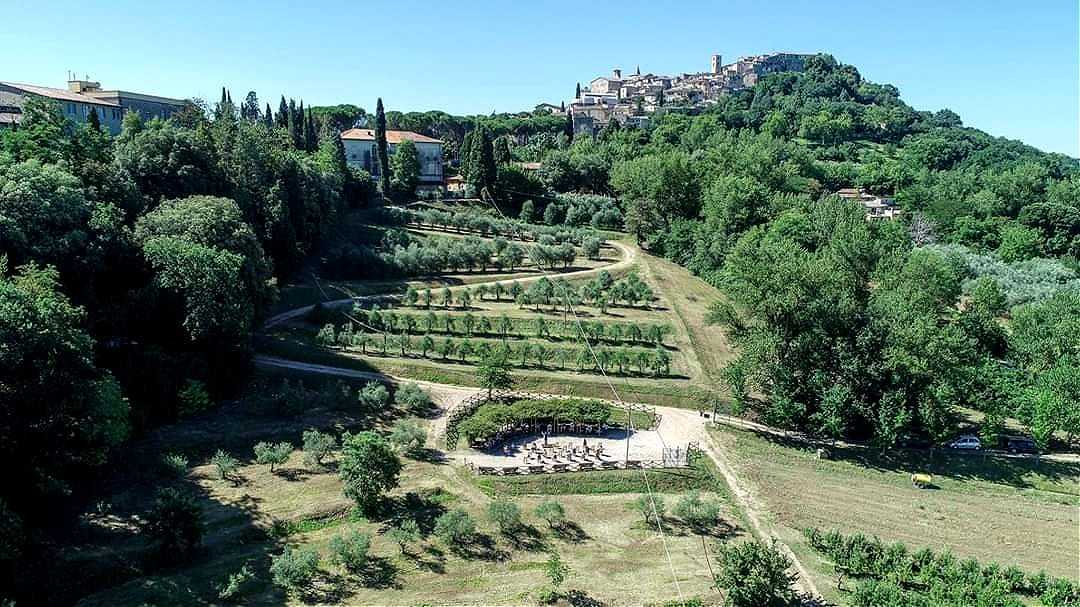 europe-world-in-italy-students-return-to-study-among-olive-trees-olive-oil-times